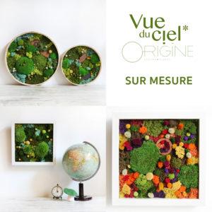 fleurs-sechees-vue-du-ciel-origine-atelier-floral-tableau végétal