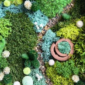 fleurs-sechees-origine-atelier-floral-vue-du-ciel5
