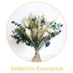 boutons site eucalyptus