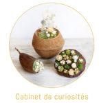 origine atelier floral boutons curiosites