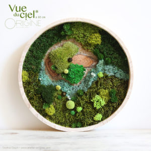 tableau-végétal-végétalisé-foret-vue-du-ciel-origine-atelier-floral-30-cm