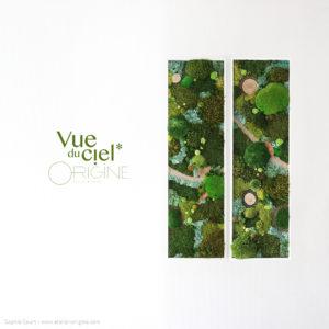 tableau-végétalisé-foret-vue-du-ciel-origine-atelier-floral-diptyque