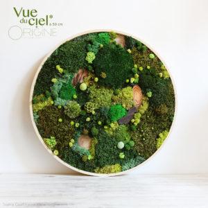 tableau-végétalisé-végétal-foret-vue-du-ciel-sophie-court-origine-atelier-floral-50-cm